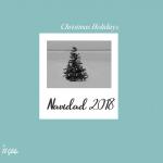 Menús para Navidad y Nochevieja